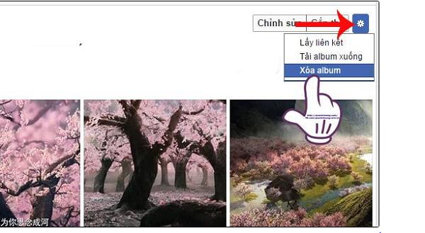 Click chọn xóa album
