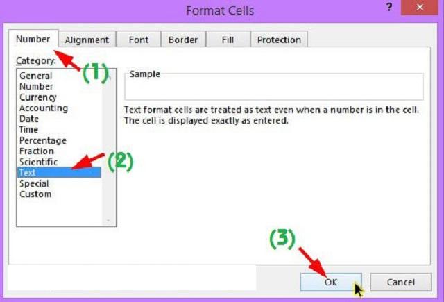 tab Number >> Chọn kiểu định dạng Text ở phần giao diện bên trái >> chọn OK.